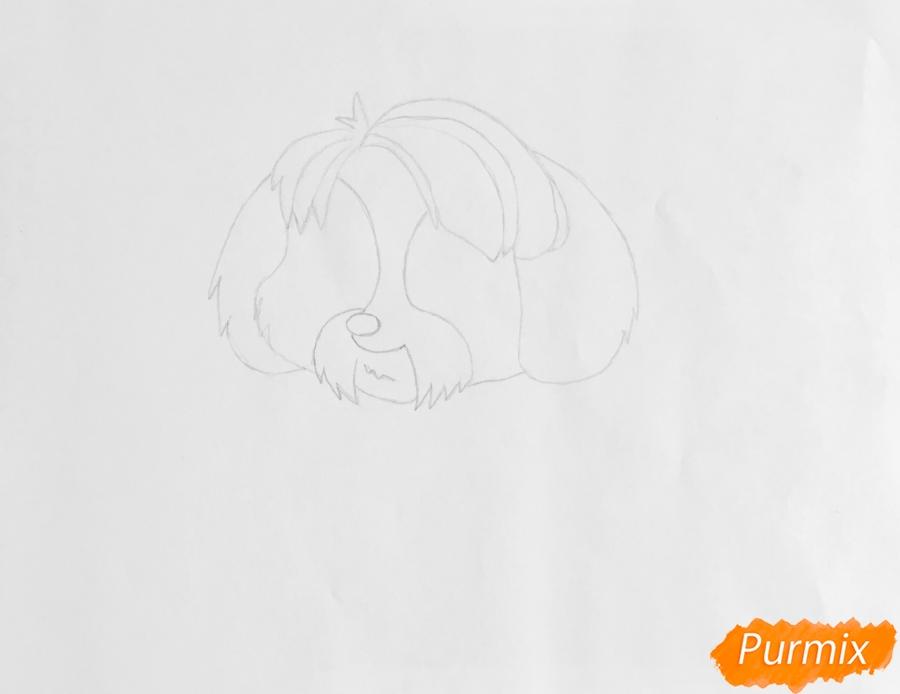Рисуем собаку Дигби из мультфильма My Littlest Pet Shop - шаг 2
