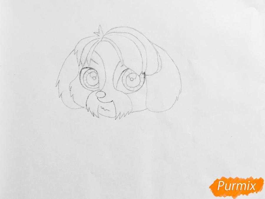 Рисуем собаку Дигби из мультфильма My Littlest Pet Shop - шаг 3
