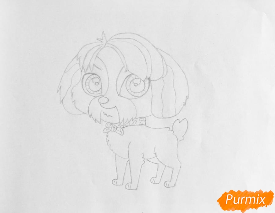 Рисуем собаку Дигби из мультфильма My Littlest Pet Shop - шаг 4