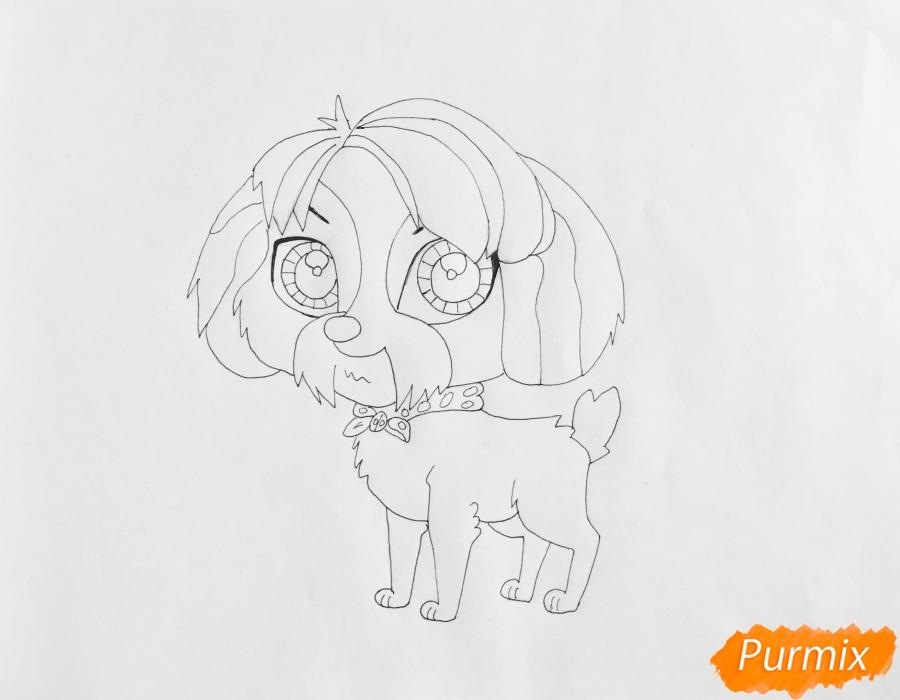 Рисуем собаку Дигби из мультфильма My Littlest Pet Shop - шаг 5