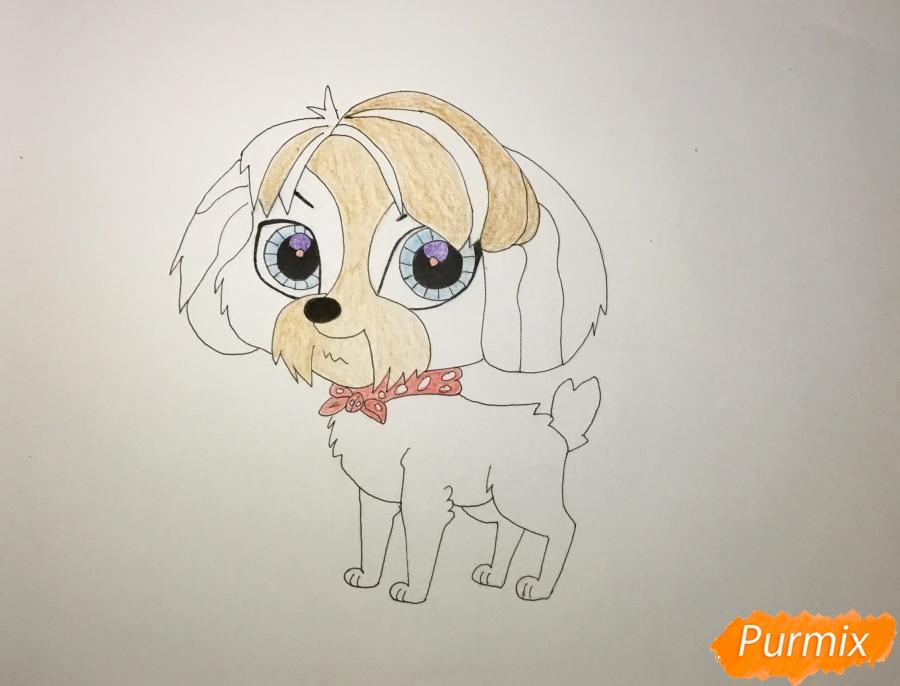 Рисуем собаку Дигби из мультфильма My Littlest Pet Shop - шаг 6