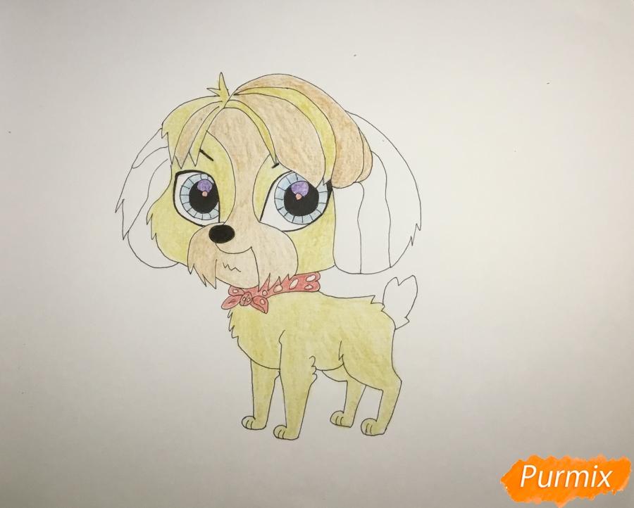 Рисуем собаку Дигби из мультфильма My Littlest Pet Shop - шаг 7