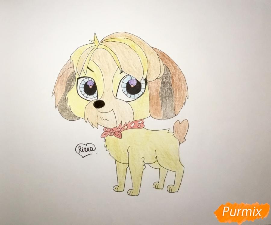 Как нарисовать собаку Дигби из мультфильма My Littlest Pet Shop карандашом поэтапно