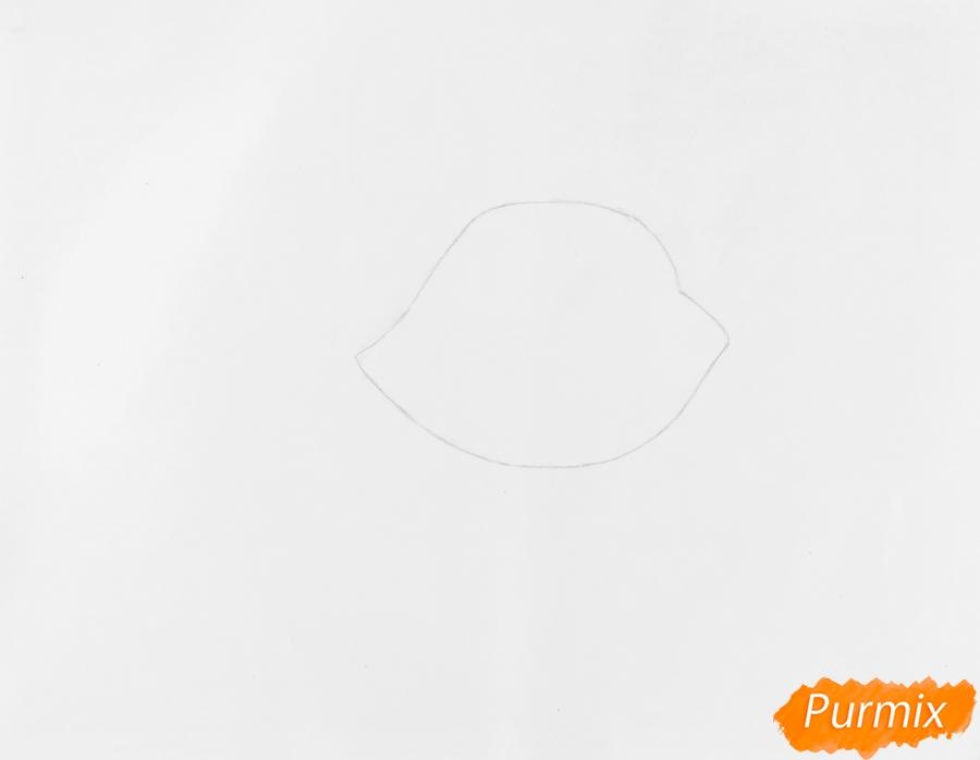 Рисуем собаку Принцессу Стори из мультфильма My Littlest Pet Shop - шаг 1