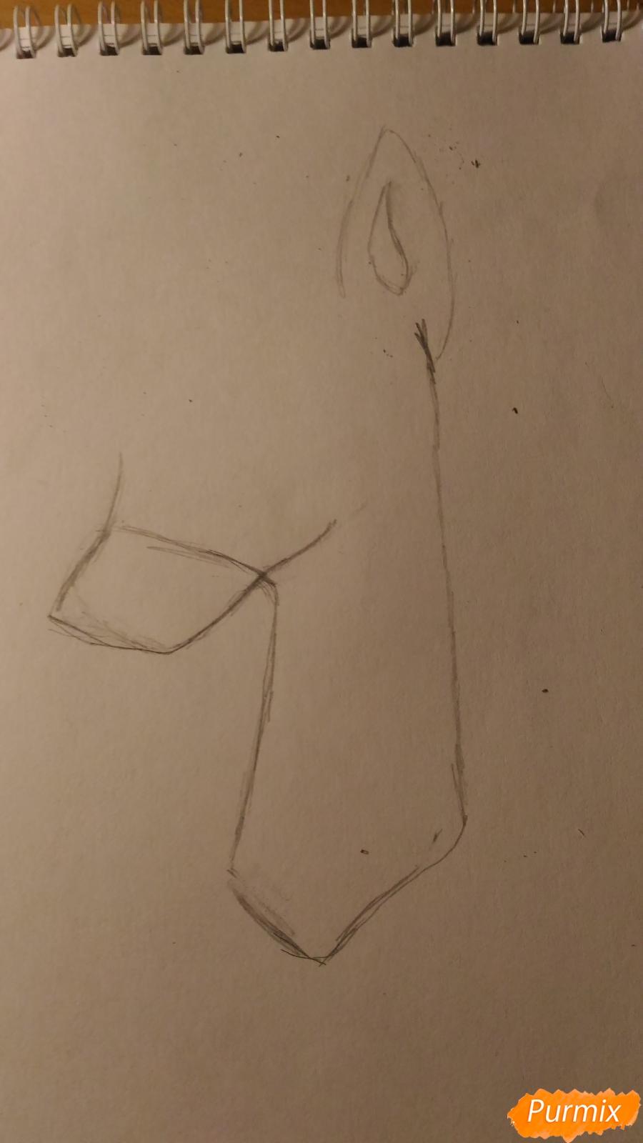 Рисуем пони принцессу Каденс из мультика My Little Pony - шаг 4