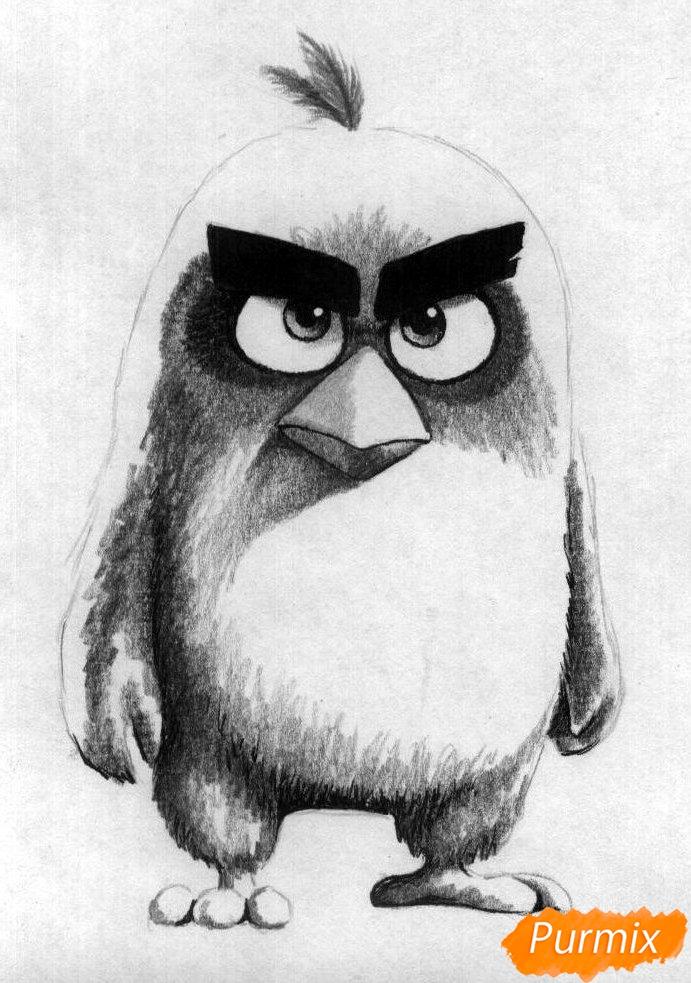 Рисуем Реда из Angry Birds в кино карандашами и ручкой - шаг 3