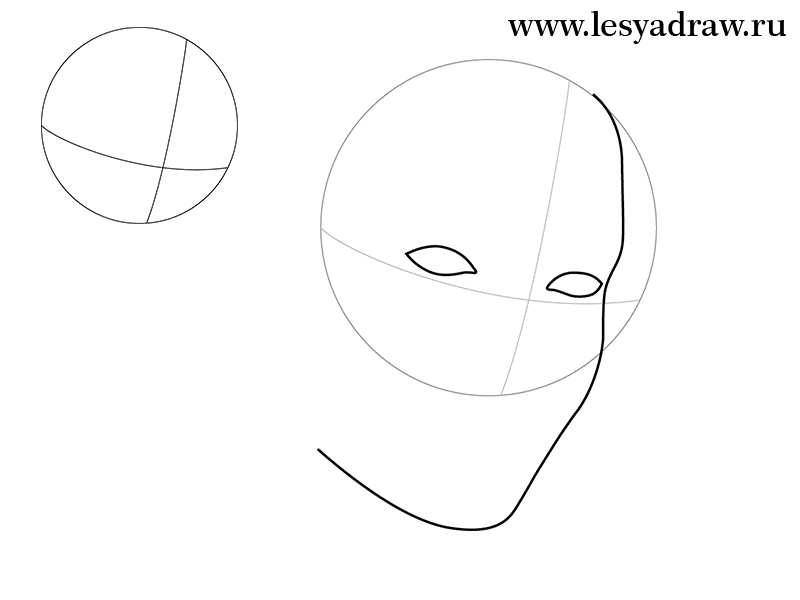 Как просто нарисовать портрет Анджелины Джоли - шаг 1