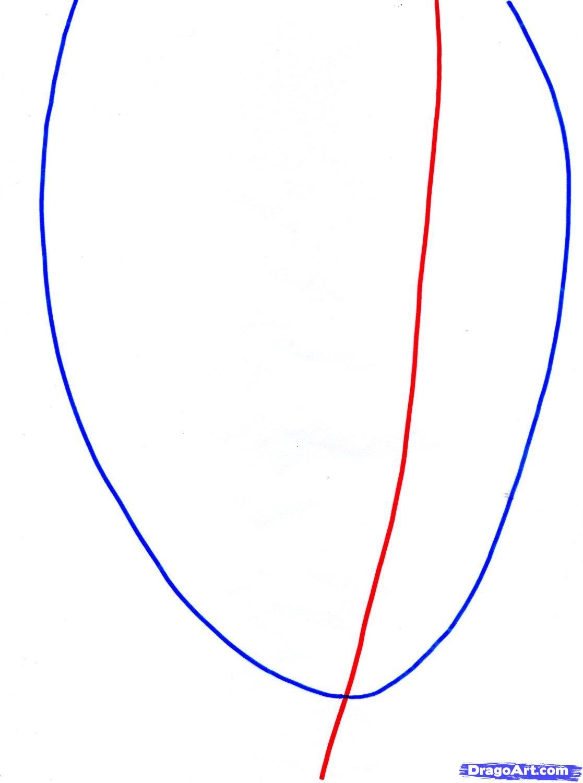Рисуем портрет Леонардо Ди Каприо   для начинающих - шаг 2