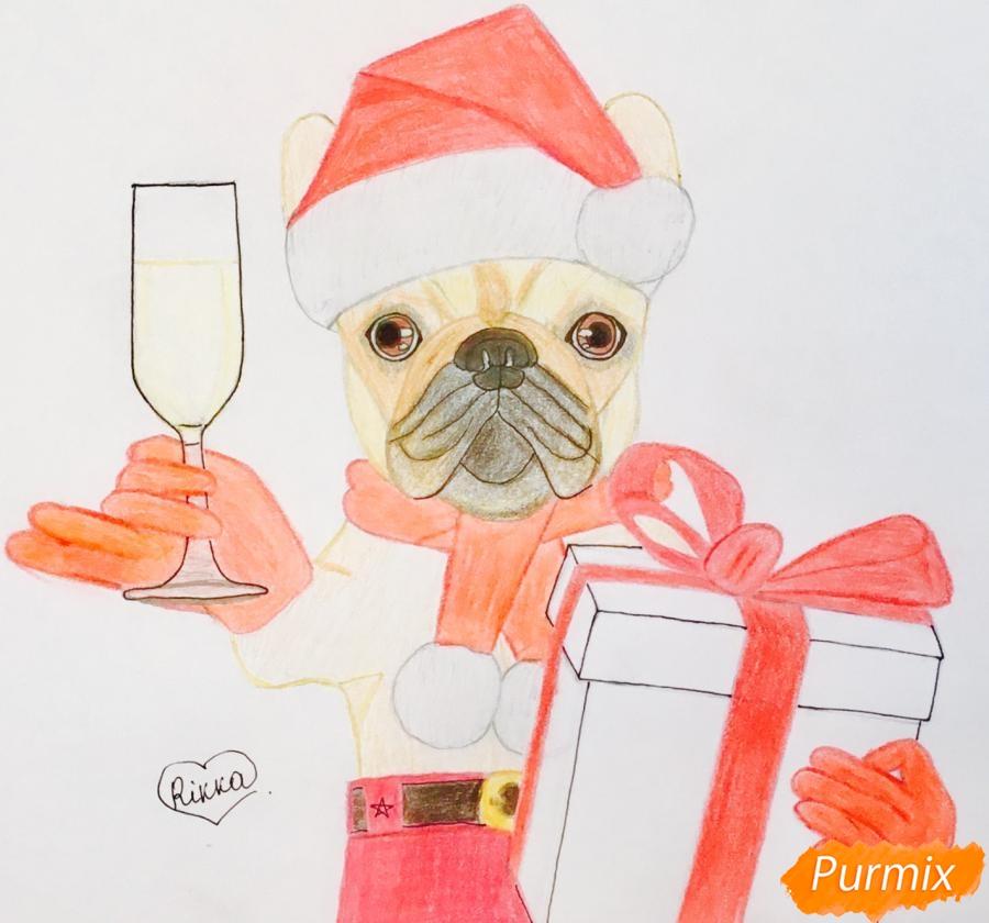 Рисуем французского бульдога с бокалом шампанского и подарком - шаг 8