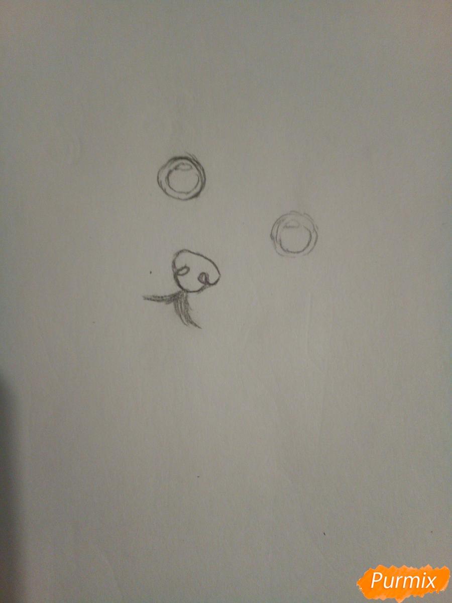 Рисуем новогоднего щеночка породы йоркширский терьер в шапочке - шаг 1