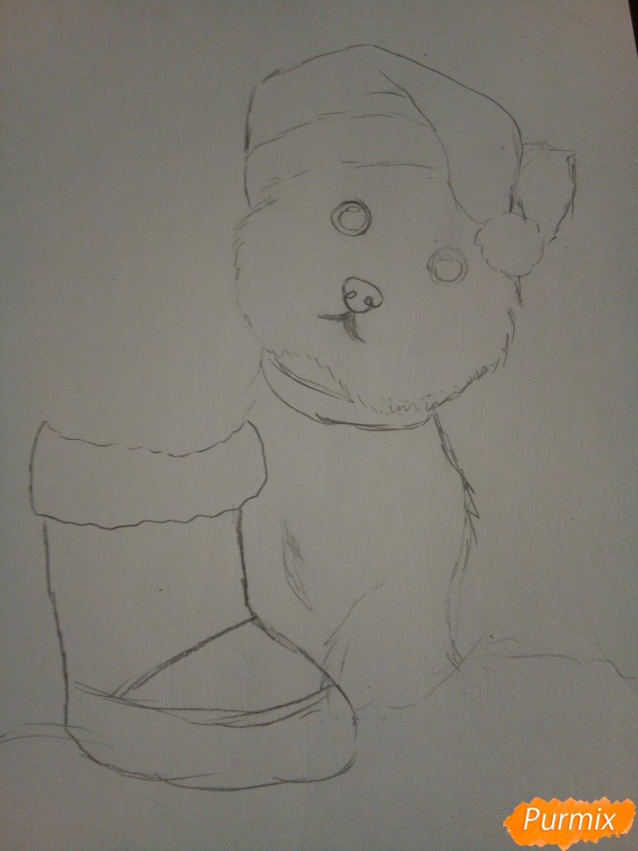 Рисуем новогоднего щеночка породы йоркширский терьер в шапочке - шаг 5