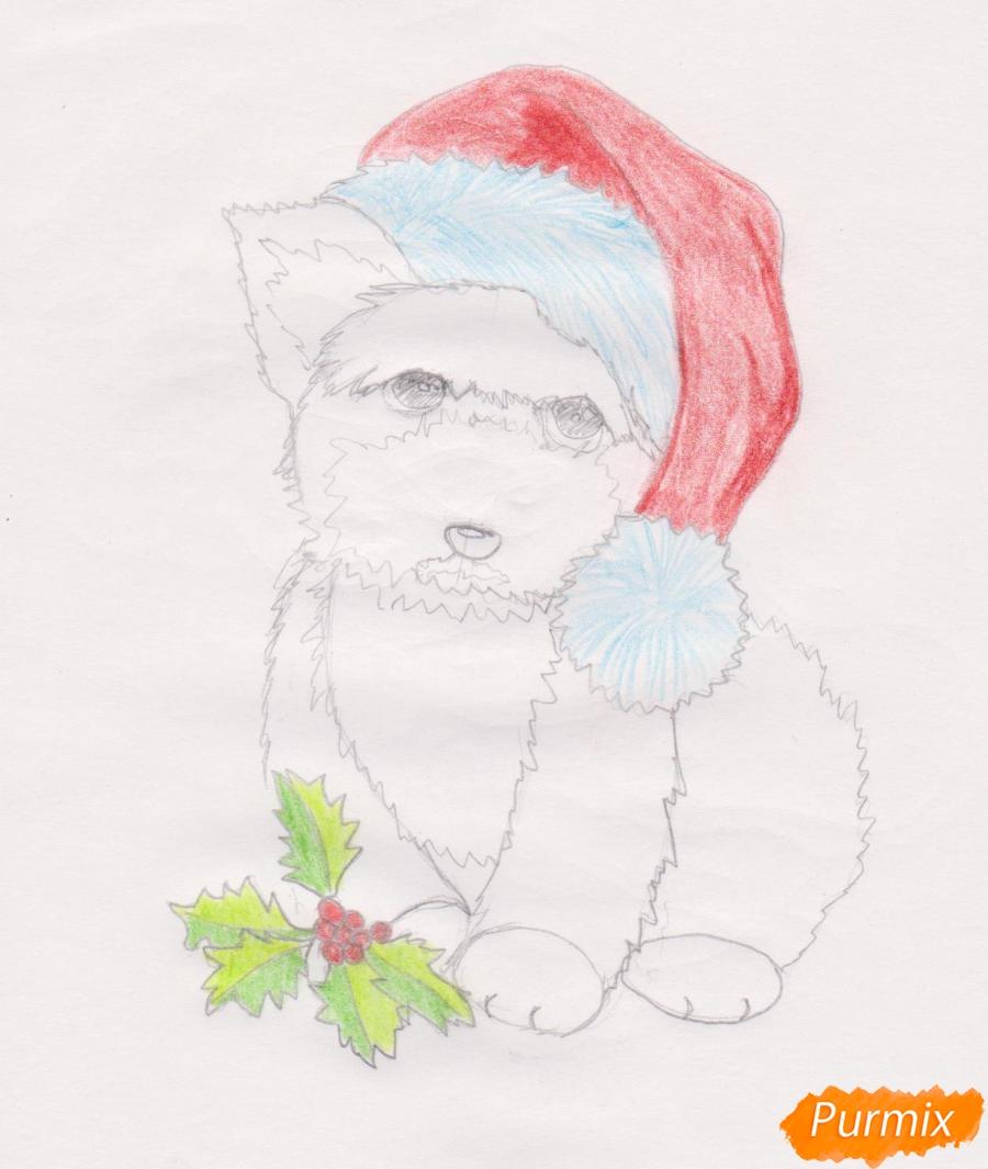 Рисуем новогоднюю собачку цветными карандашами - шаг 7