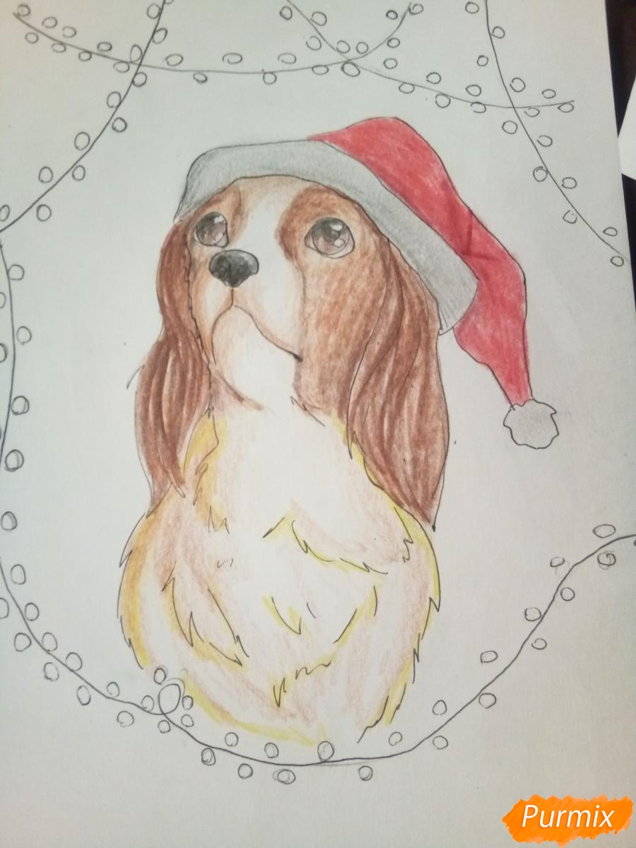 Рисуем собачку породы кавалер кинг-чарльз-спаниель на новый год - шаг 10
