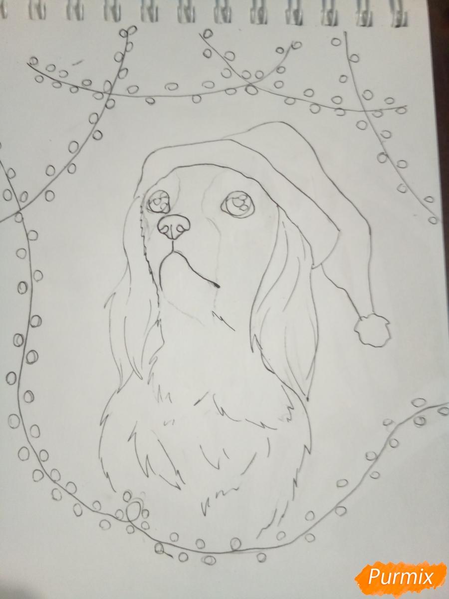 Рисуем собачку породы кавалер кинг-чарльз-спаниель на новый год - шаг 6