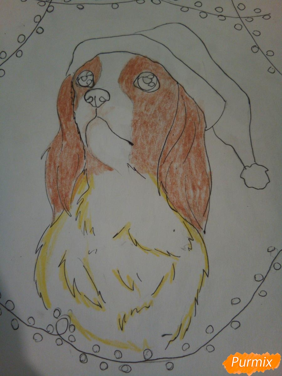 Рисуем собачку породы кавалер кинг-чарльз-спаниель на новый год - шаг 7