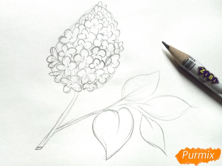 Рисуем белую сирень - шаг 3