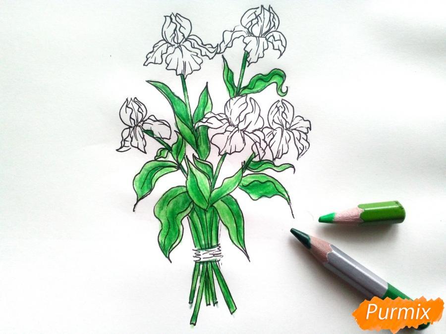 Рисуем букет ирисов цветными карандашами - шаг 6