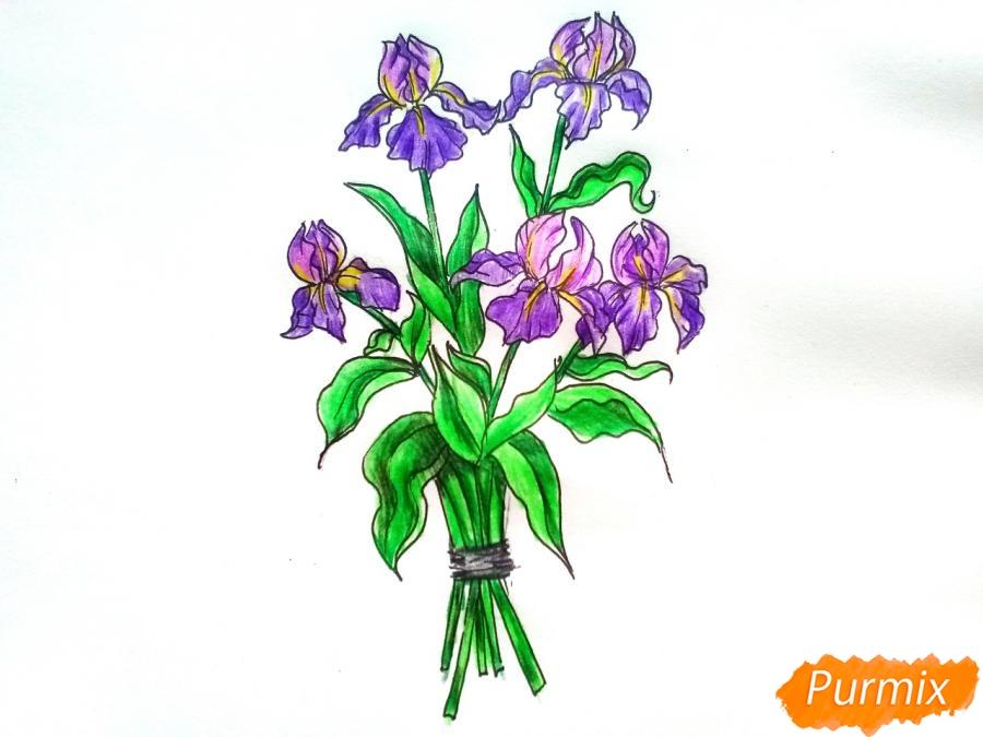 Рисуем букет ирисов цветными карандашами - шаг 9