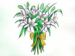 букет лилий карандашом