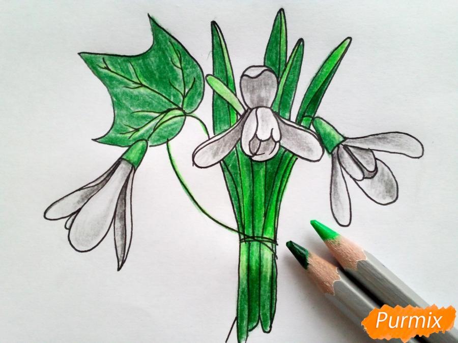 Рисуем букет подснежников цветными карандашами - фото 7