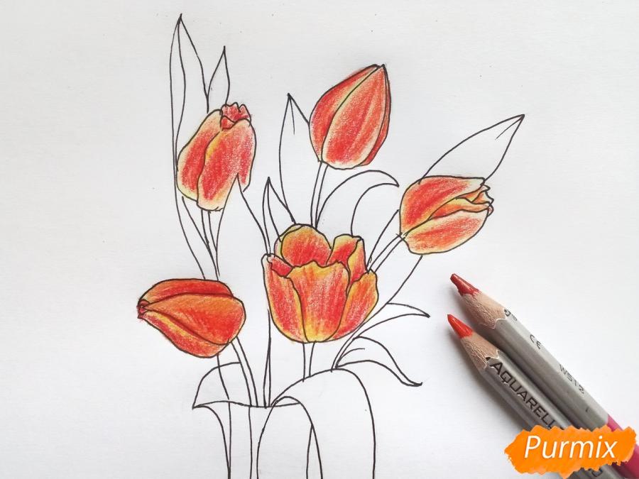 Рисуем тюльпаны в вазе - фото 7