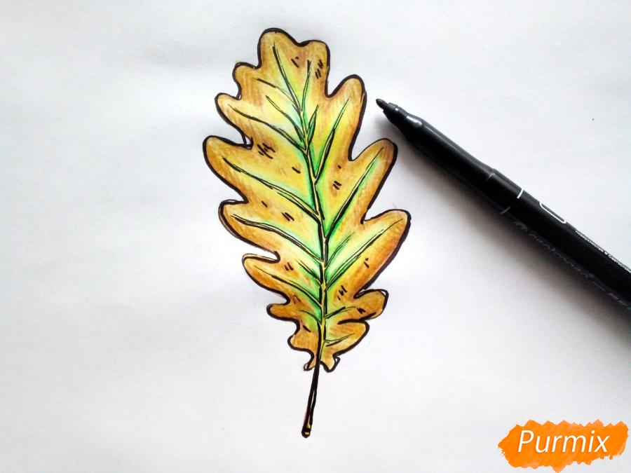 Рисуем дубовый лист карандашами - фото 7