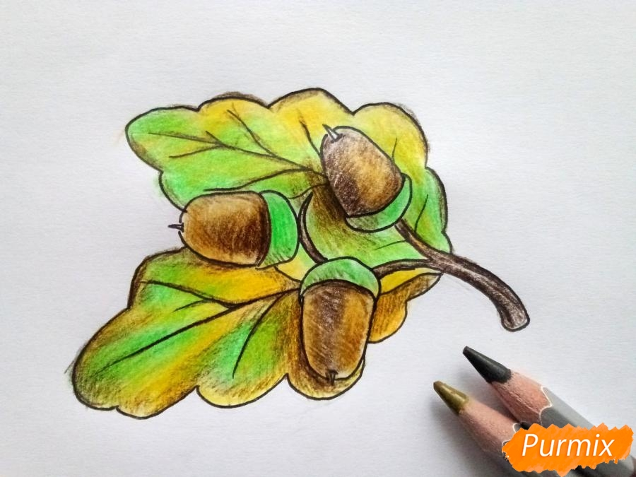 Рисуем дубовый лист с желудем - фото 6