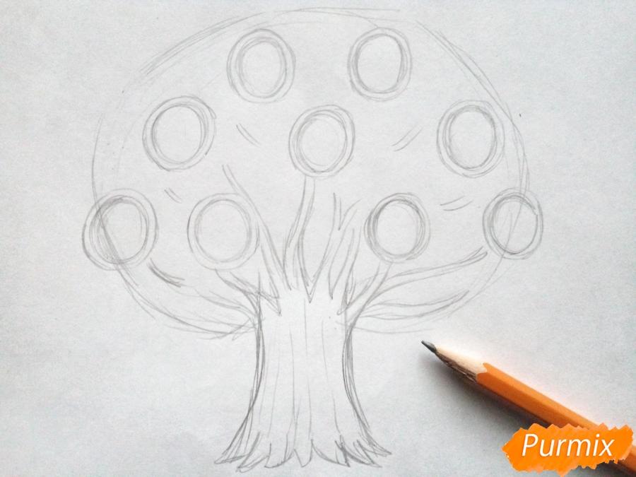Рисуем генеалогическое дерево семьи карандашами - шаг 2