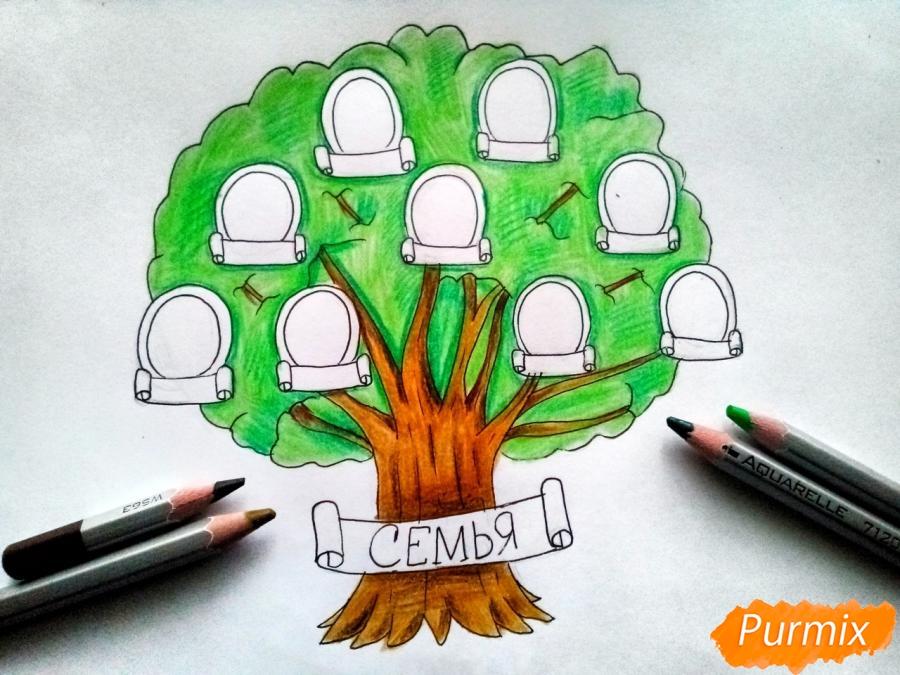 Рисуем генеалогическое дерево семьи карандашами - шаг 5