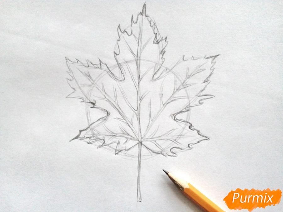 Рисуем кленовый лист черной ручкой - фото 3