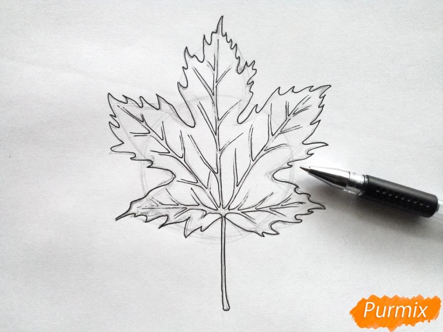 Рисуем кленовый лист черной ручкой - фото 4