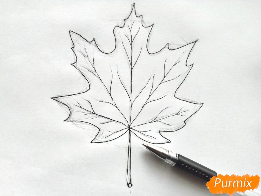 Рисуем кленовый лист цветными карандашами - фото 4