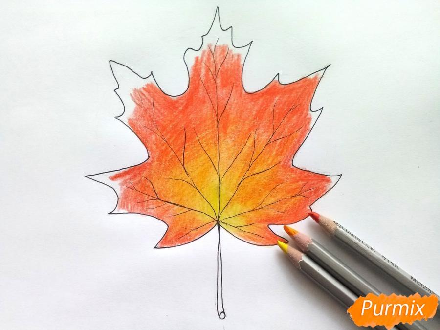 Рисуем кленовый лист цветными карандашами - фото 5