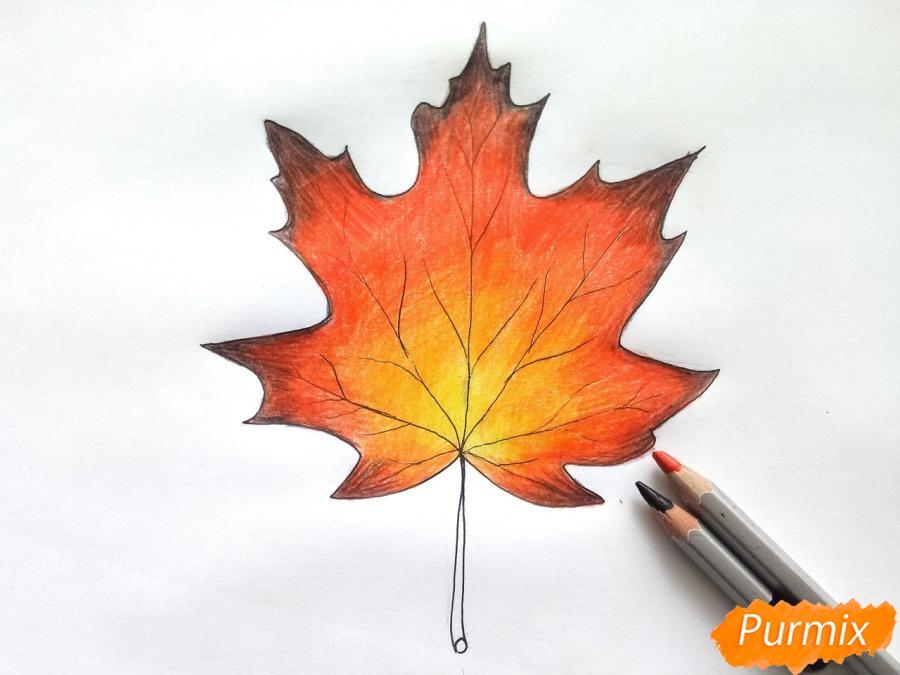 Рисуем кленовый лист цветными карандашами - фото 6