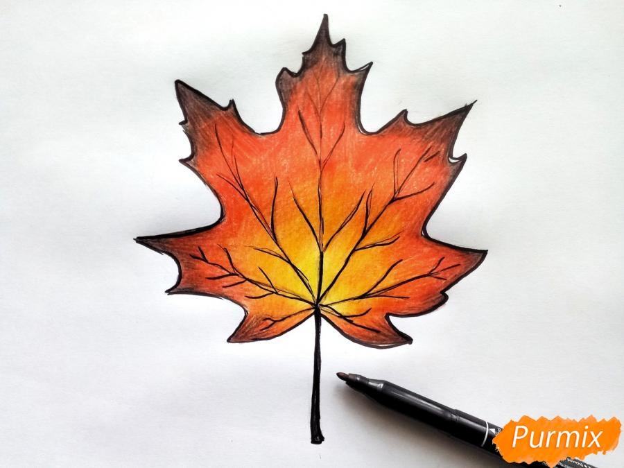 Рисуем кленовый лист цветными карандашами - фото 7