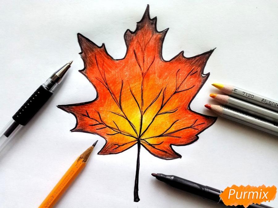 Рисуем кленовый лист цветными карандашами - фото 8