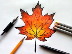 кленовый лист . 4 урока