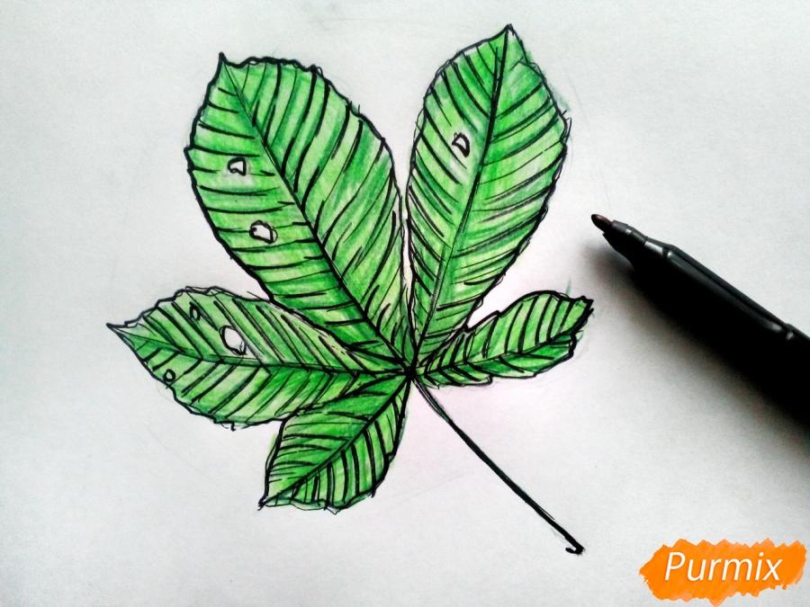 Рисуем лист каштана карандашами - фото 6