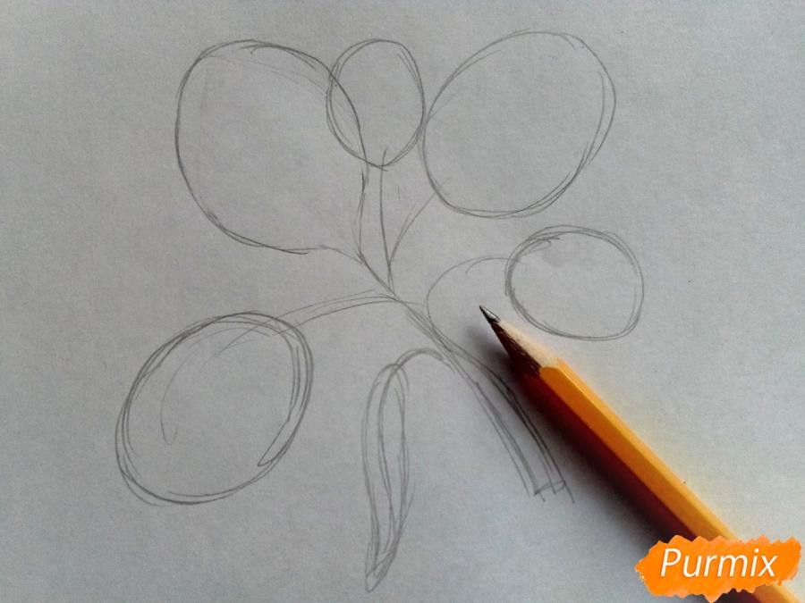 Рисуем листья тополя на ветке - фото 1