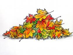 опавшие осенние листья карандашом