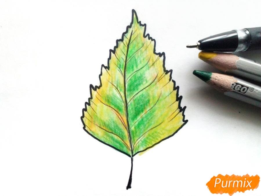Рисуем осенний березовый лист - фото 4