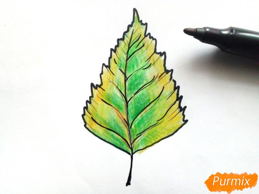 Рисуем осенний березовый лист - фото 5