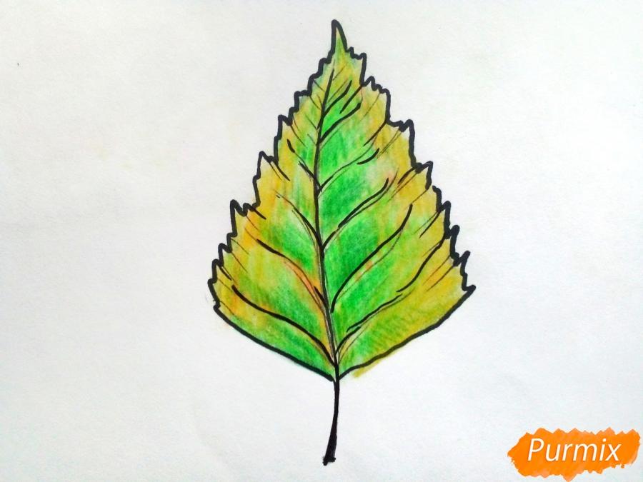 Рисуем осенний березовый лист - фото 6
