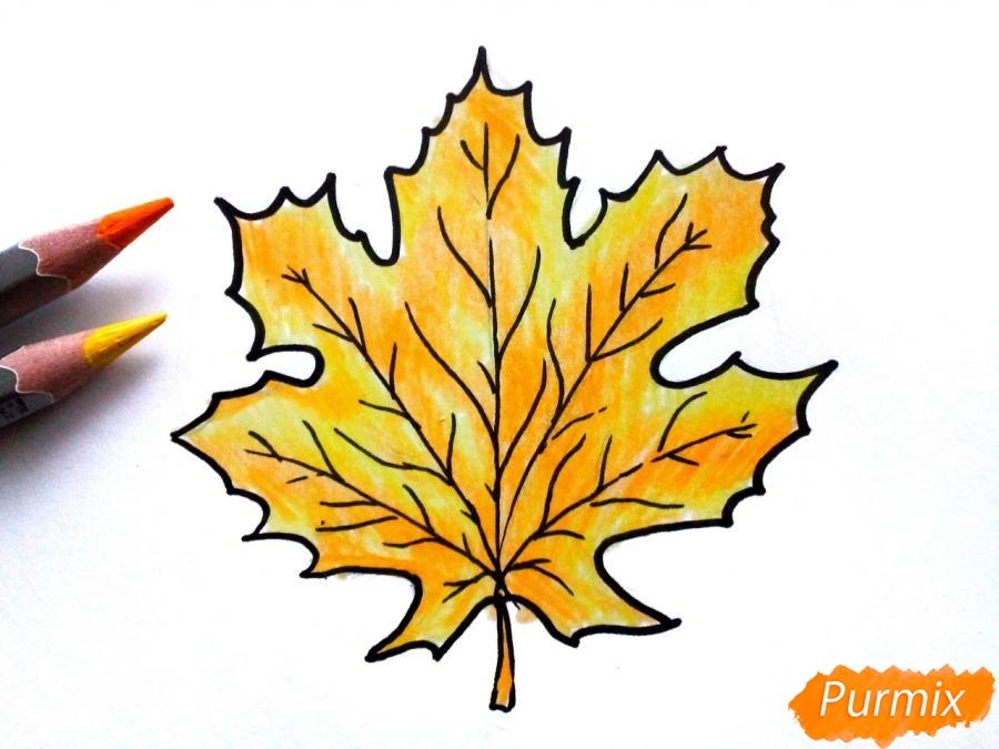 Рисуем осенний кленовый лист - фото 5