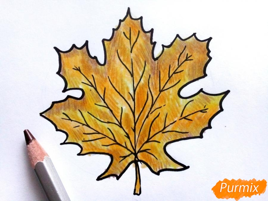 Рисуем осенний кленовый лист - фото 6