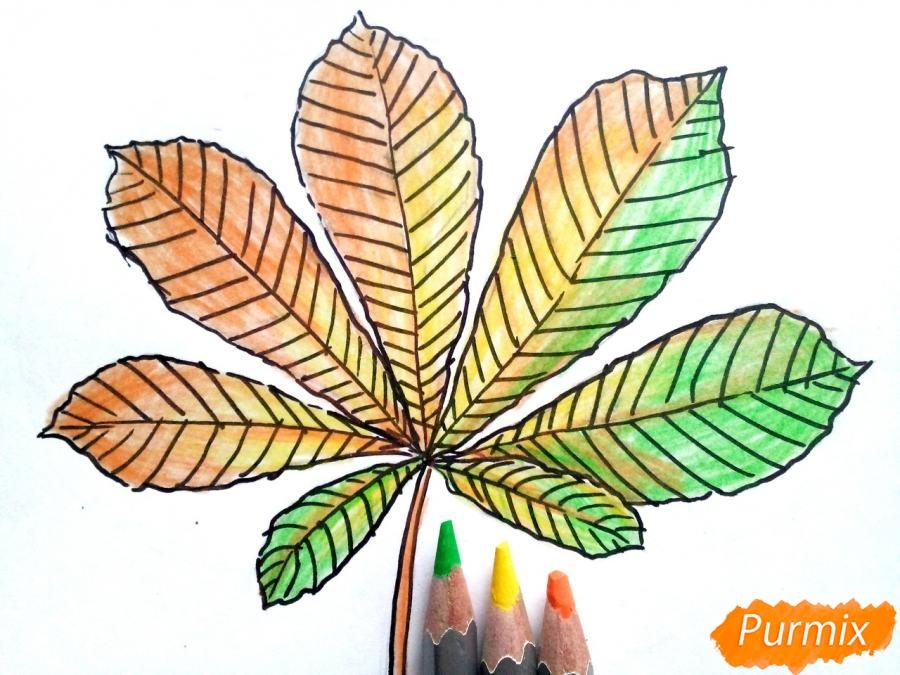 Рисуем осенний лист каштана - фото 5