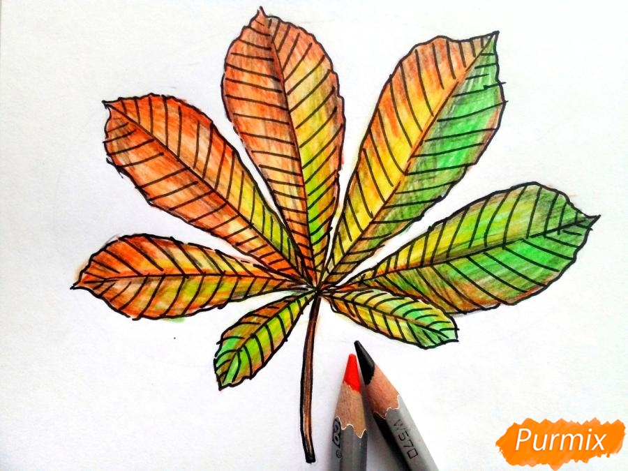 Рисуем осенний лист каштана - фото 6