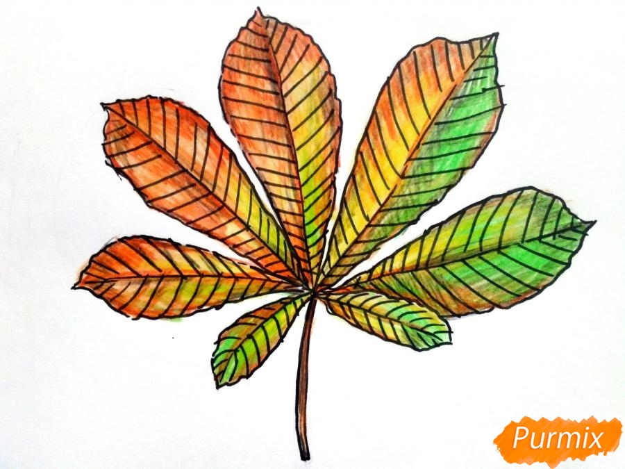 Рисуем осенний лист каштана - фото 7