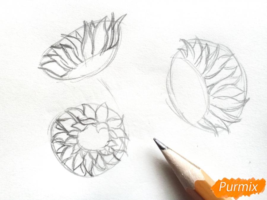 Рисуем подсолнухи в вазе - шаг 2