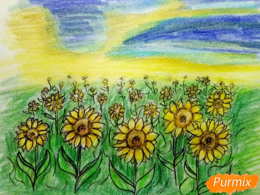 Рисуем поле подсолнухов - фото 10